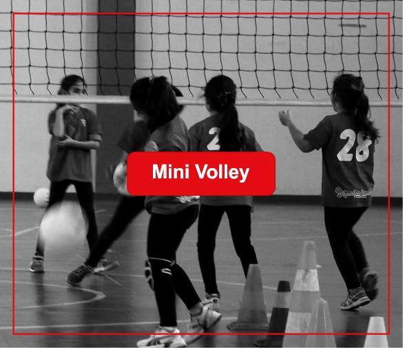 miny volley a selargius